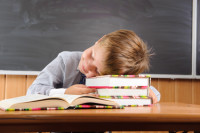 Sleeping boy with books at the desk